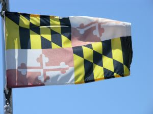775798_maryland_state_flag