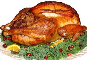 667872_thanksgiving_turkey_white_background