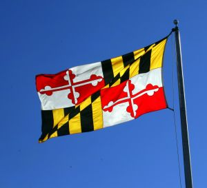 maryland-flag-639323-m